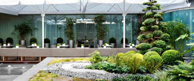 Sanderson - Courtyard Garden