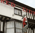 Brook Red Lion